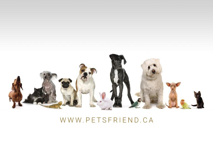 Pet's Friend Store in Newmarket